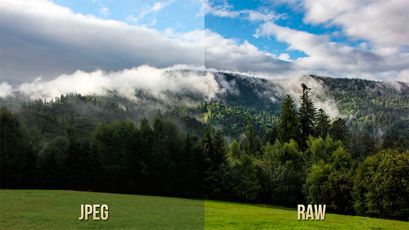 Diferencias fotografía RAW vs JPEG