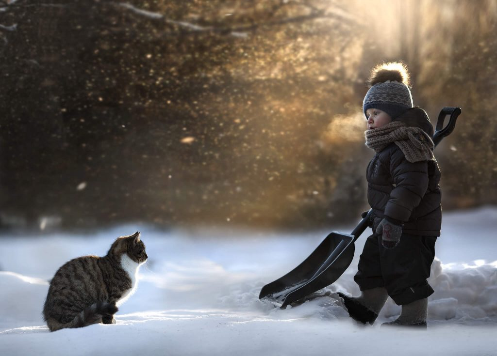 Fotografiando la naturaleza con nieve